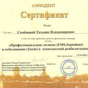 Сертификат Семеновой Т.В,